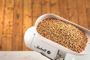 Getreidemühle Draufsicht